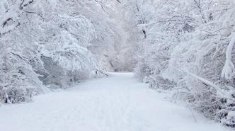 strada-innevata-neve